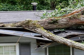 michigan storm damage insurance restoration